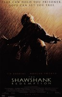 The Shawshank Redemption Freedom Framed Print