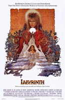 Labyrinth Fine Art Print