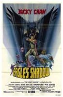 "Eagle's Shadow - 11"" x 17"""
