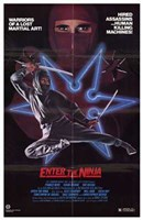 "Enter the Ninja - 11"" x 17"", FulcrumGallery.com brand"