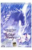 "The Silver Brumby - 11"" x 17"" - $15.49"
