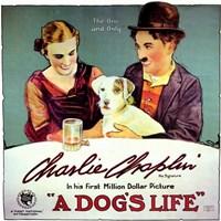 "Dog's Life  a - 17"" x 11"" - $15.49"
