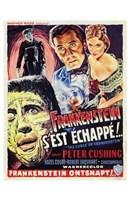 """Curse of Frankenstein - 11"""" x 17"""""""