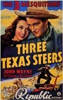 "Three Texas Steers - 11"" x 17"", FulcrumGallery.com brand"