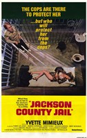 "Jackson County Jail - 11"" x 17"""