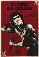 Re-Enter the Dragon Wall Poster