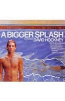 """A Bigger Splash - 11"""" x 17"""""""