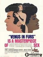 """Venus in Furs - 11"""" x 17"""""""