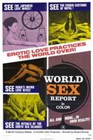 "World Sex Report - 11"" x 17"""