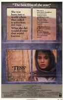 "Tess Window - 11"" x 17"" - $15.49"