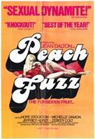 """Peach Fuzz - 11"""" x 17"""""""