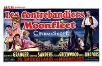 "Moonfleet - 17"" x 11"""