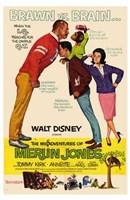"""The Misadventures of Merlin Jones - 11"""" x 17"""""""