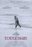 "Turtle Diary - 11"" x 17"""