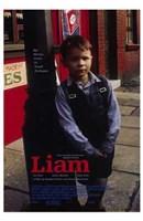 """Liam - 11"""" x 17"""""""
