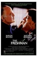 "The Freshman - 11"" x 17"""