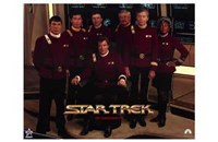 "Star Trek Movie Series - 17"" x 11"""