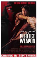 """The Perfect Weapon - 11"""" x 17"""""""