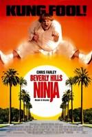 "Beverly Hills Ninja - 11"" x 17"", FulcrumGallery.com brand"