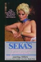 "Seka's Fantasies - 11"" x 17"""