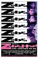 "Zebrahead - 11"" x 17"", FulcrumGallery.com brand"