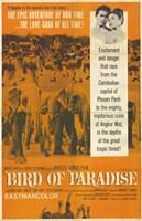 "Bird of Paradise - 11"" x 17"""