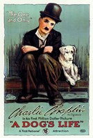 A Dog's Life Wall Poster