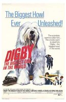 Digby the Biggest Dog in World