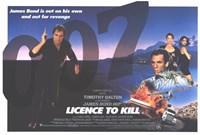"""Licence to Kill 007 Bond - 17"""" x 11"""""""