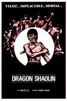 "Dragon Shaolin - 11"" x 17"""