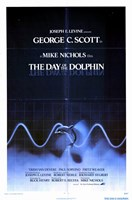 """Day of the Dolphin - 11"""" x 17"""" - $15.49"""