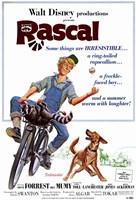 "Rascal - 11"" x 17"""