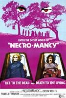 """Necromancy - 11"""" x 17"""""""
