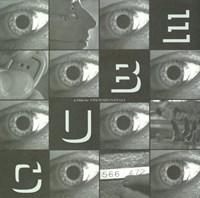 "Cube - 17"" x 11"", FulcrumGallery.com brand"