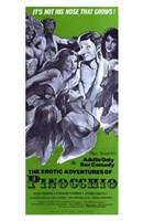 """Erotic Adventures of Pinocchio - 11"""" x 17"""""""