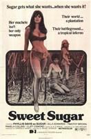 "Sweet Sugar, 1972, 1972 - 11"" x 17"""