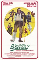 """They Call Me Bruce (movie poster) - 11"""" x 17"""""""