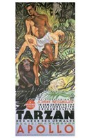 Tarzan the Ape Man, c.1932 (German) - style A Wall Poster