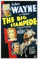 "Big Stampede - 11"" x 17"", FulcrumGallery.com brand"