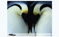 March of the Penguins Love Fine Art Print