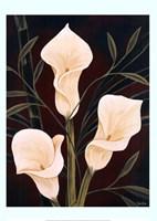 Botanical Elegance II Fine Art Print