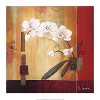 Orchid Lines II Fine Art Print