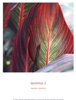 Vermillion I Fine Art Print