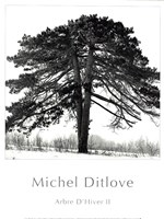 "Arbres D'Hivers II by Michel Ditlove - 12"" x 16"""