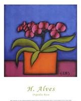 Orquidia Rosa Fine Art Print