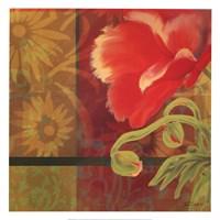 "Kaleidoscope I by Tandi Venter - 20"" x 20"", FulcrumGallery.com brand"