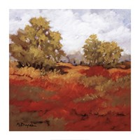 Scarlet Fields I Framed Print