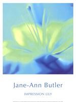 Impression Lily Fine Art Print
