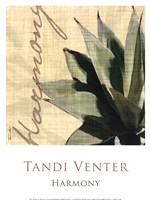 "Harmony by Tandi Venter - 12"" x 16"""