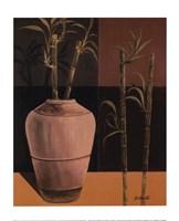 Lucky Bamboo II Fine Art Print